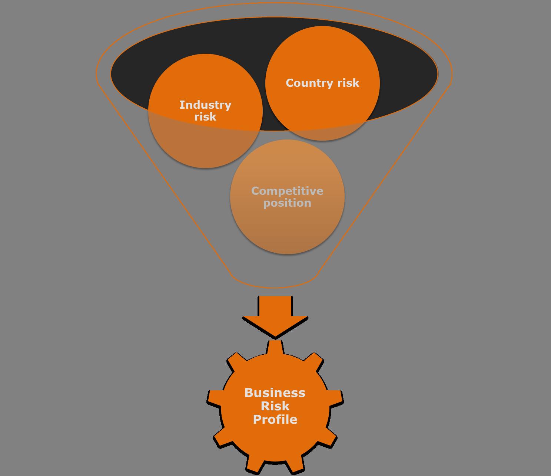 Business Risk Profile